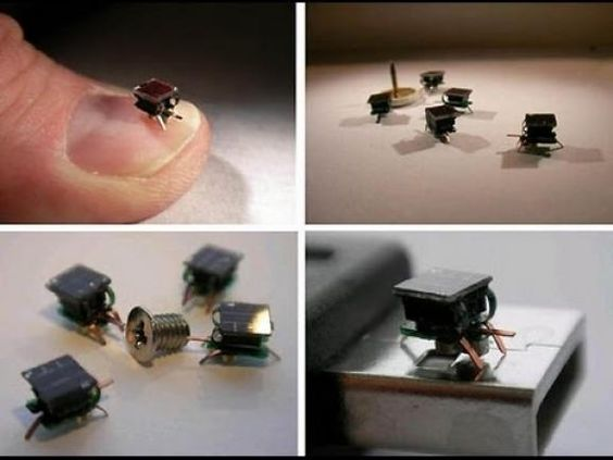 Swarms of tiny robots the size of insects build things | ScienceDump