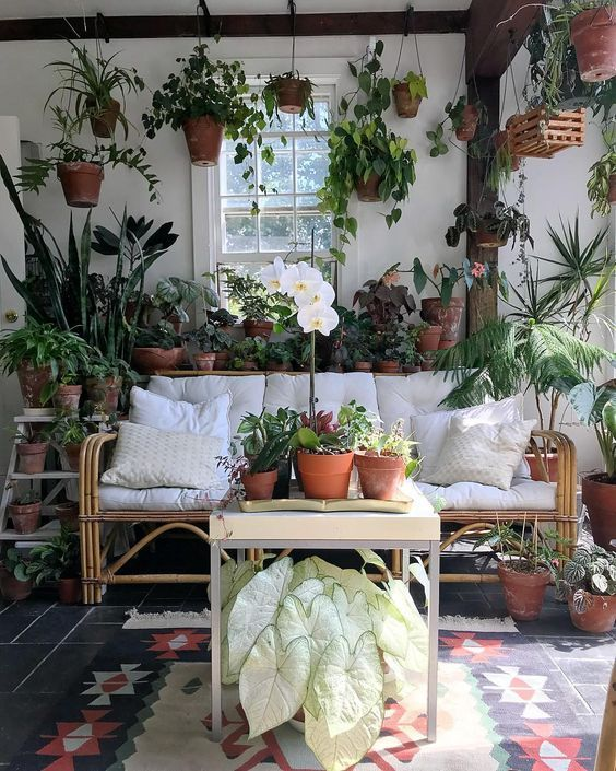 Indoor Jungle Small Spaces Gardening Idees Pour Amenager Son Balcon Bancos Plant Shelf Green Home Plan Zimmerpflanzen Dekor Wohnen Und Garten Wohnen Im Grunen