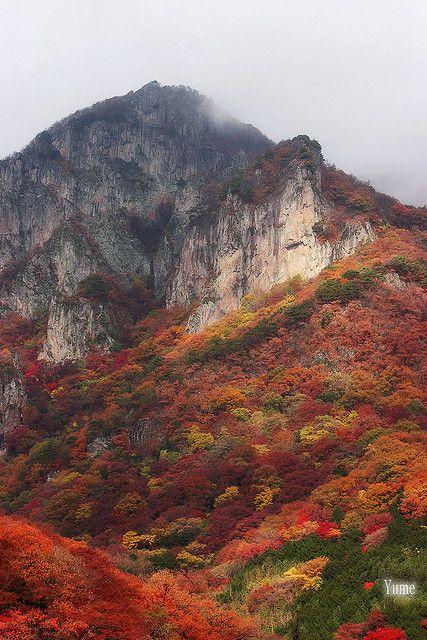 Colorful Autumn Mountain