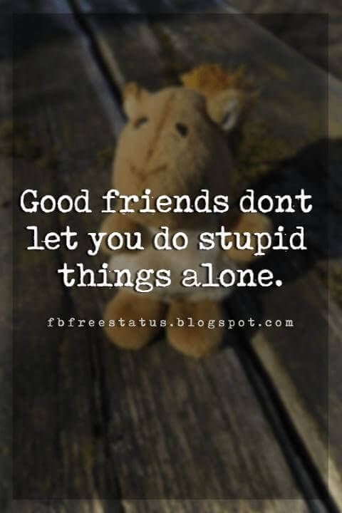 Friendship Quotes Short Funny Friendship Quotes Good Friends Dont Let You Do Stupid Things Alone Friendship Quotes Funny Short Friendship Quotes Friendship Humor