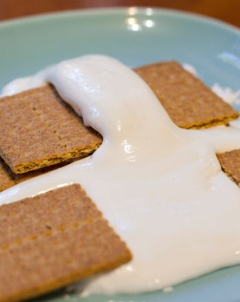 Science Fair: Exploring the Movement of Tectonic Plates with S'Mores