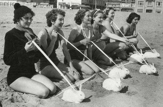 Run, rabbit, run. California 1935