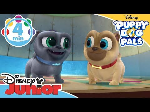 Disneyjunioruk Youtube With Images Dogs And Puppies Black