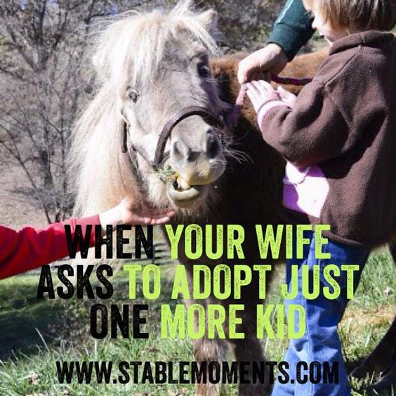When your wife asks to adopt just one more kid. www.stablemoments.com