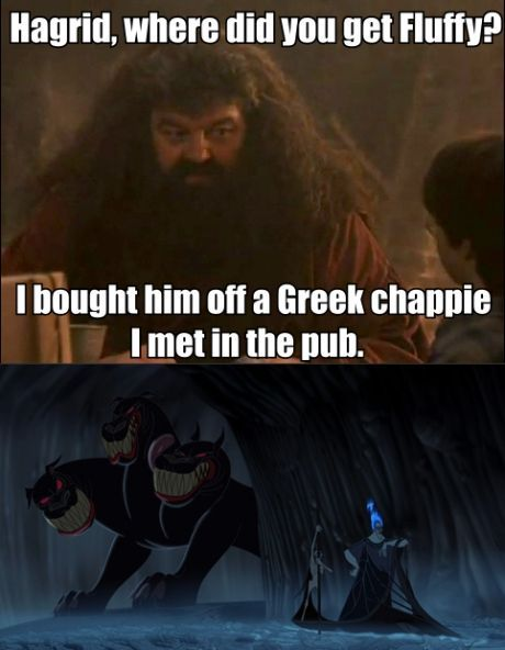 """It comes as no surprise that the three headed hound belongs to Rubeus Hagrid who is renowned as having a penchant for collecting dangerous beasties. When being verbally grilled by the three young wizards, Hagrid boasts about how he acquired the guard-dog from a """"Greek chappie"""" he met in the pub. It then becomes clear that Fluffy is intended to be Cerberus of Greek Mythology – the three headed dog which guards the gates of the Underworld. (Harry Potter and the Sorcerer's Stone)"""
