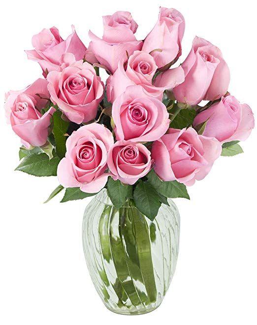 Amazon Com Kabloom Bouquet Of 12 Fresh Pink Roses Farm Fresh