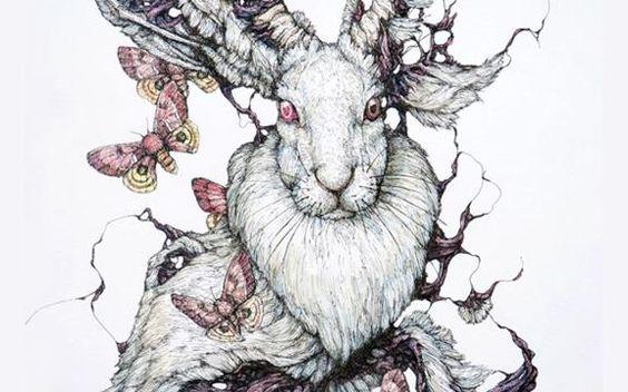 Hand Drawn Illustration by Lauren Marx