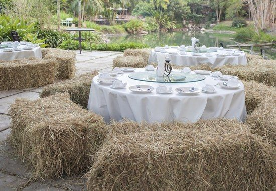 Simple But Stunning Wedding Reception Ideas to Steal Immediately | Simple  weddings, Wedding reception venues and Garden weddings - Simple But Stunning Wedding Reception Ideas To Steal Immediately