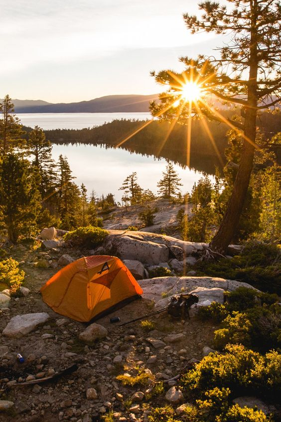 Best hacks for finding free camping in the USA. Use these ideas to find a tent camping site with a view to take your dogs, kids, or small travel trailer. Advice and inspiration for finding primitive areas that are perfect for outdoor photography, backpacking, hiking, and mountain biking. #vanlife