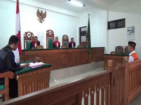 Terdakwa Ilegal Logging Dituntut  1 Tahun 4 Bulan Bui