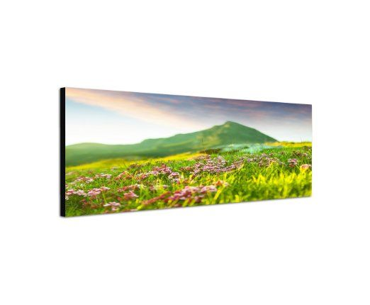 Wandbild auf Leinwand als Panorama in 150x50cm Wiese Blumen Berge Frühling Natur
