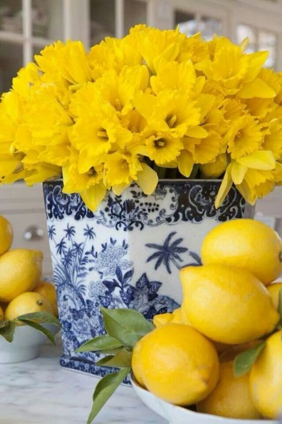 Daffodils and blue and white are such a good combination!: