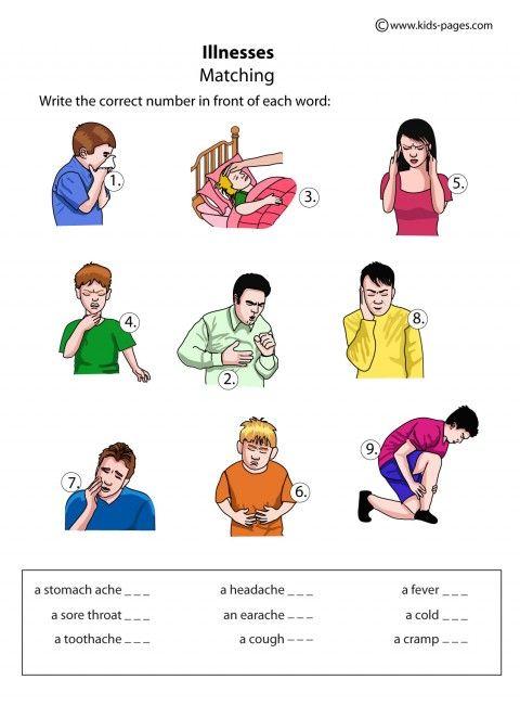 number names worksheets  health worksheets for kids  free  &