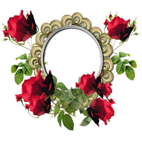 Oval Pink Borders | Scrapbook-Style-Flower-Border-Oval-Photo-Frame-with-Red-Roses