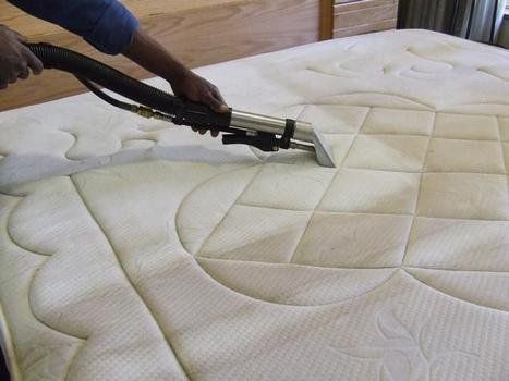 How To Remove Bedbugs With The Help Of Mattress Cleaning Mattress Cleaning Mattress Cleaner Mattress