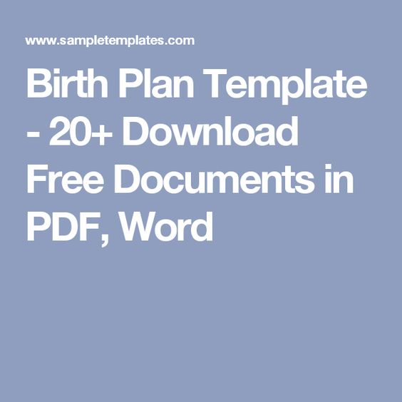 Birth Plan Template - 20+ Download Free Documents in PDF, Word - plan template in pdf