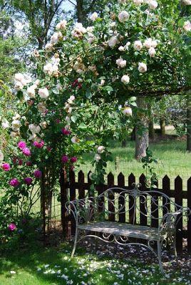 Mon jardin mes merveilles petit tour du propri taire banc de jardin pinterest jardins - Petit jardin culinary arts tours ...