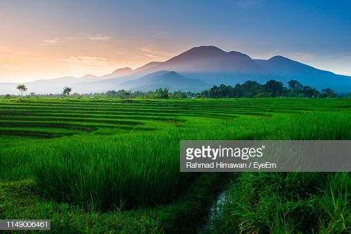 Instagram Photography Canon Wallpaper Art Print Bali Nature Landscape Art Graphic Asia Natu In 2020 Nature Photography Quotes Bengkulu Sky Photography