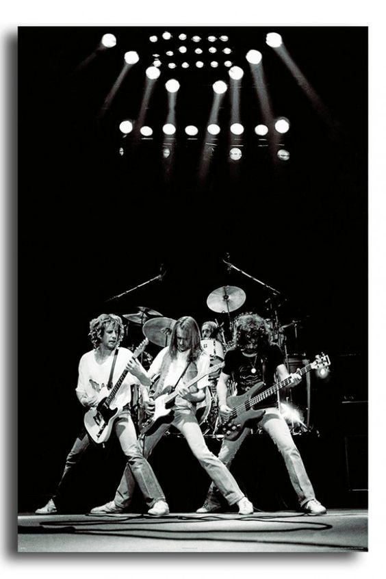 Status Quo Live 1981 Poster | iPosters