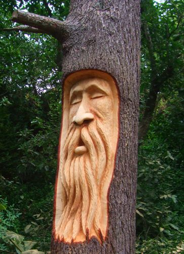 Trees chainsaw carvings and sculpture on pinterest