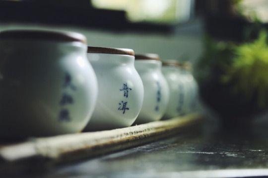 baoputang365|抱朴堂365
