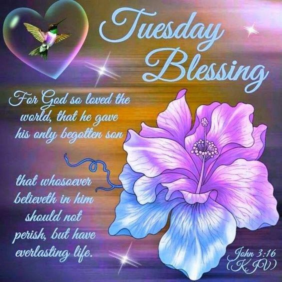 Good Morning Tuesday Blessings Images And Quotes