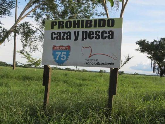 ¿Sabías que en las Haciendas Francia y Lusitania nos esforzamos por proteger la fauna del departamento de Córdoba? En nuestras tierras está prohibida la caza y la pesca.