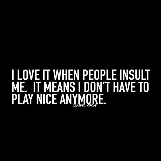I love it when people insult me. It means I don't have to play nice anymore.