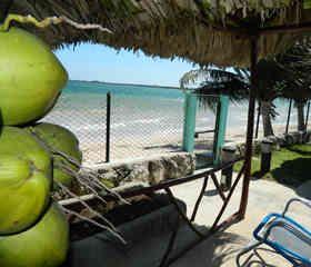 Casas de renta en Playa Larga, en la península de zapata, cuba.
