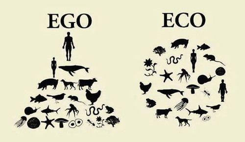 EGO - ECO