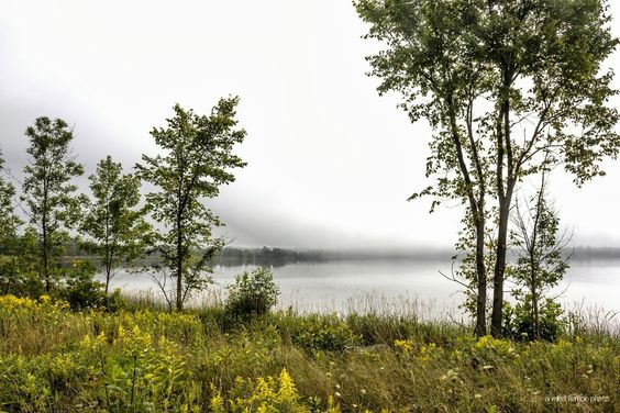 Misty Ice Lake Morning by Mikell Herrick