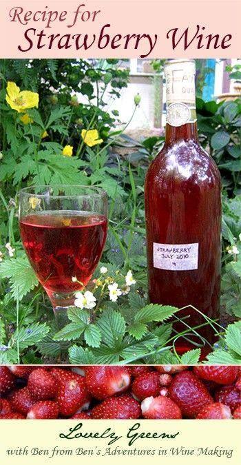 Pinterest the world s catalog of ideas - Make good house wine tips vinter ...