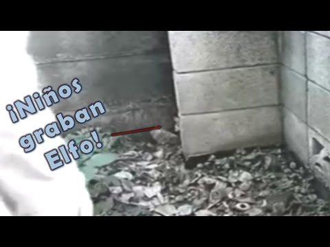NIÑOS GRABAN ELFO - YouTube