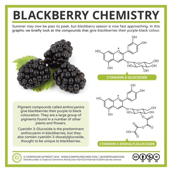 With blackberry season approaching, here's a quick graphic looking at blackberry colour chemistry. Posts have been a bit few and far between over the last week or so as I was off at ACS Phila…