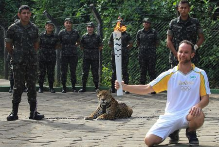 SICKENING! Brazilian physiotherapist Igor Simoes Andrade poses for picture next to jaguar Juma as he takes part in the Olympic Flame torch relay in Manaus