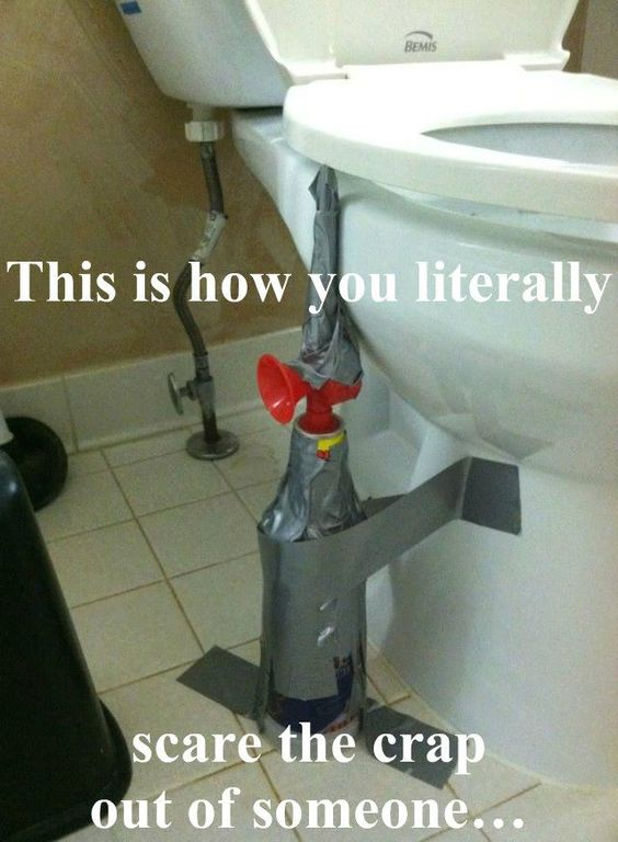 funny meme of the day toilet