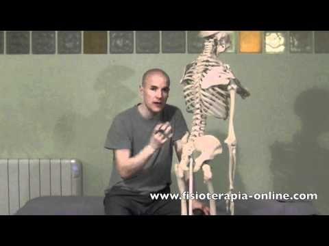 Sacroileitis izquierda - Visión desde la fisioterapia y la medicina natural.