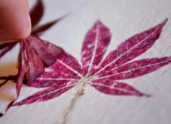 Impresiones naturales de plantas y flores en papel de acuarela | DEF Deco - Decorar en familia