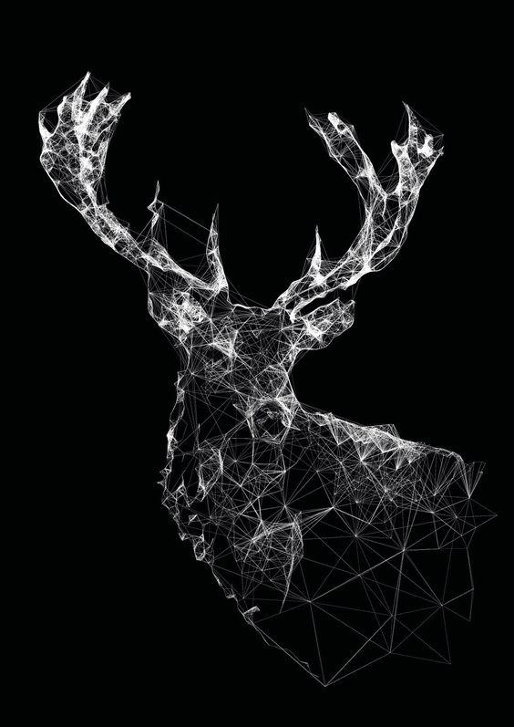 Stag by Jordan Rogers #geometric #antlers #deer