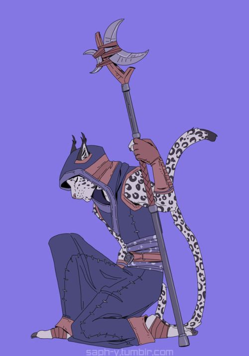 Male Female Androgenous Tabaxi Cleric Selune Cat Character