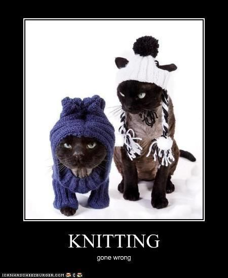 Funny Knitting Puns : Knitting crafting memes pinterest happy knits and kitty