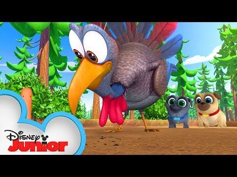Happy Thanksgiving From Bingo And Rolly Puppy Dog Pals