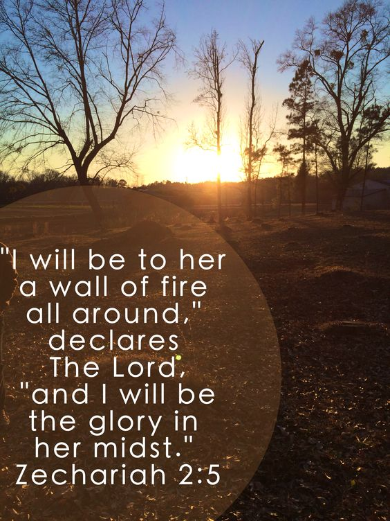 """And I will be to her a wall of fire all around,"" declares The Lord, ""and I will be the glory in her midst."" Zechariah 2:5:"