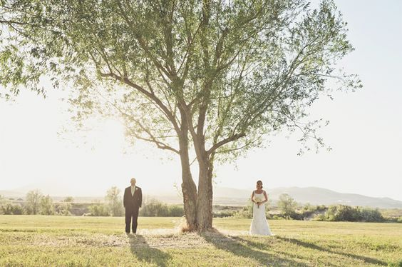 Love the centered tree -Rebekah Westover Photography