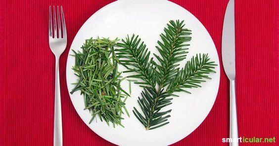 Hast du schon mal einen Weihnachtsbaum gegessen oder getrunken? Entferne Kugeln und Kerzen und verwerte deinen Baum in gesunde Köstlichkeiten!