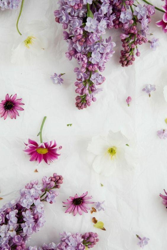 Fondos De Primavera Fondos De Pantalla Para Celulares Fondos De Primavera Fondos De Pantalla En Movimie Phone Wallpaper Flower Wallpaper Cellphone Wallpaper