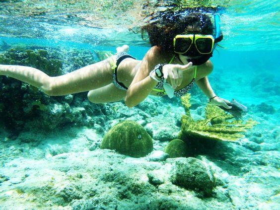 Water .: Summer Tease, Beach Summer, Diving Underwater, California Summer, Summer A K A, Summer Lovin, Summer Fun, Freediving Snorkeling, Summer Time
