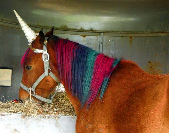 Rainbow #unicorn at #amandacupcake #cupcakemansion party!