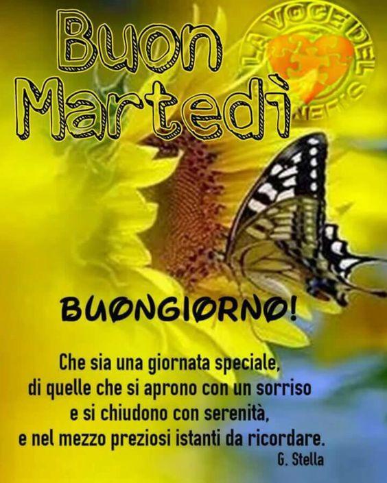 I saluti di Maggio - Pagina 6 257dccef5ce9dee9ff61dafaaaf6d69d
