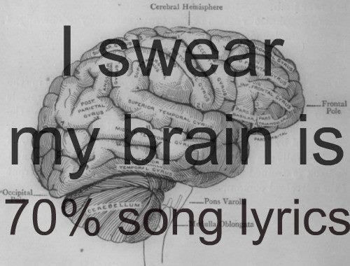 Song Lyrics. Take up way too much space in my brain.